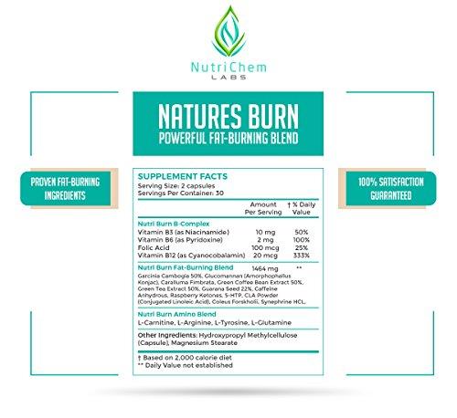 NutriChem Labs NATURES BURN - Natutral Weight Loss Supplement, Appetite Suppressant & Muscle Preserving Fat Burner - 60 Veggie Pills