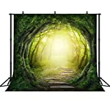 FHZON 10x10ft Dreamy Magical Backdrop Dream Beautiful Forest Photography Video Studio Photo Backdrop Props FH121