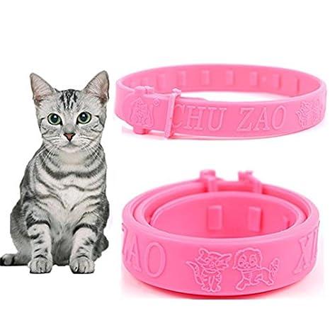 Zorux - Collar de Silicona Suave para Mascota, Gato, Gato, pulgas Ajustable, práctico, para Gatos y Gatos: Amazon.es: Productos para mascotas