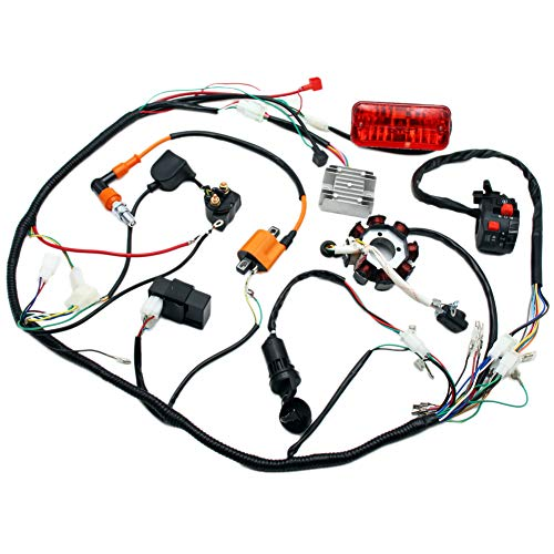 Complete Electrics 4 Stroke ATV QUAD 150 200 250 300CC Wiring Harness CDI 8 Coil Stator Tail Light Zongshen Lifan