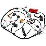 Complete Electrics 4 Stroke ATV QUAD 150 200 250