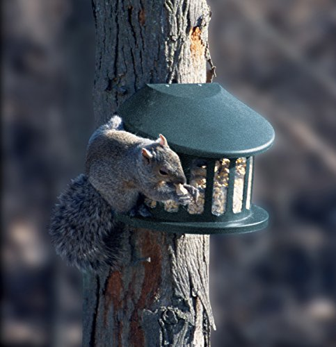 Woodlink Squirrel Diner Feeder  Model 75590