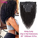 Rolisy Kinkys Curly Clip in Hair Extensions Afro 3C 4A Kinky Curly Clip ins Real 8A Brazilian Remy Hair for Black Women Double Lace Wefts Hair,Natural Black Color,10 Pcs,120 Gram,20 Inch
