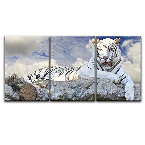 3 Panel White Tiger Lying on the Rock x 3 Panels