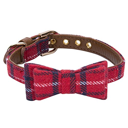 StrawberryEC Puppy Collar