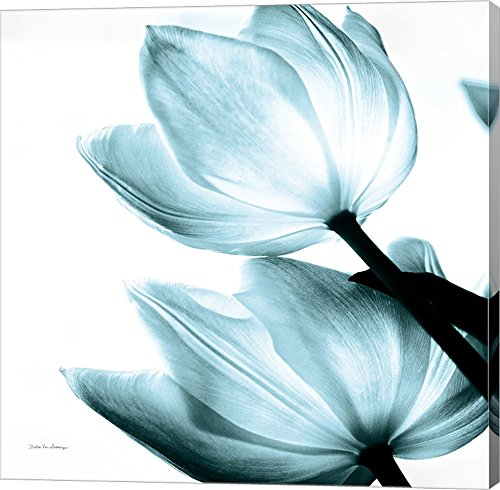 Translucent Tulips II Sq Aqua Debra Van Swearingen