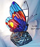 Warehouse of Tiffany's TU2021 Tiffany Style Blue Butterfly Accent Lamp - One Size - red