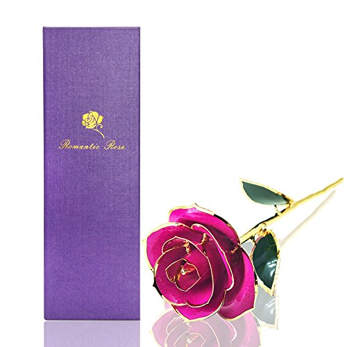 (econoLED Long Stem Dipped 24k Gold Trim Red Rose in Gift Box,valentines Gifts for Couples, Cute Valentines Day Gift Ideas, Good Couple Gifts for Valentines, Romantic Anniversary)