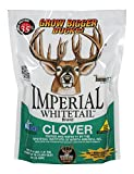 Whitetail InstituteImperial Whitetail Clover 18 - lb. Bag