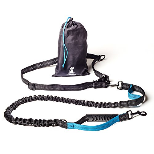 FLASH SALE | Hands-Free Dog Leash for Medium and Large Dogs – Professional Harness with Reflective Stitches for Training, Walking, Jogging and Running Your Pet