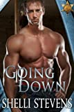 Front cover for the book Going Down (Holding Out for A Hero, #1) by Shelli Stevens