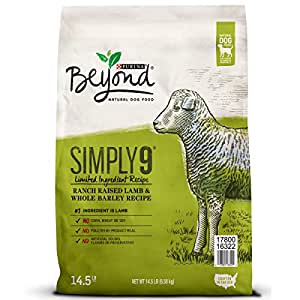 Amazon.com: Purina Beyond Limited Ingredient, Natural Dry