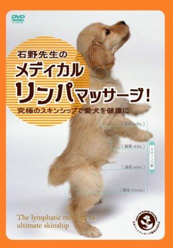 石野先生のメディカル・リンパマッサージ 究極のスキンシップで愛犬を健康に! [DVD]