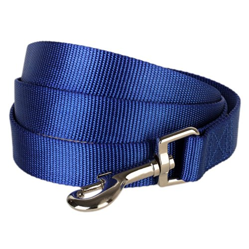 "Blueberry Pet 19 Colors Durable Classic Dog Leash 5 ft x 5/8"", Royal Blue, Small, Basic Nylon Leashes for Dogs"