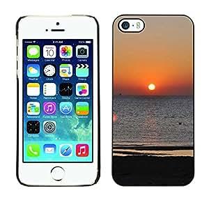 Cubierta de la caja de protección la piel dura para el Apple iPhone 5 / 5S - Blue Butterfly Water Splash