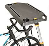Conquer Adjustable Height Cycling Trainer