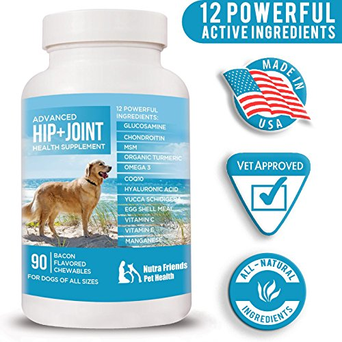 Joint Supplement for Dogs - All Natural Hip and Joint Support - Glucosamine, MSM, Chondroitin, Organic Turmeric, Omega 3, CoQ10 - Arthritis Pain Relief - Made in USA - 90 Joint Care Chew-able Tablets