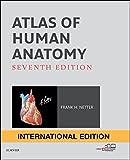Atlas of Human Anatomy International Edition (Netter Basic Science)