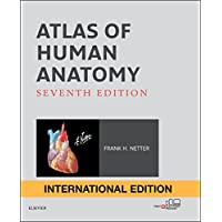 Atlas of Human Anatomy International Edition (Netter Basic Science)