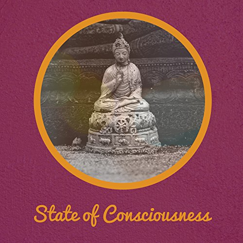 State of Consciousness - Life Force Energy, Development Feelings, Religious Tradition, Treatment of Depression, Mind Blank, Training for Mind, Comfortable Seating Position, Inspection Body and Mind, Deep Breath, Exhale Pacific, Struggle with Drugs