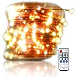 OrgMemory Dimmable LED String Lights, (120 Ft, 360 Leds, Warm White, UL Certified Power Adapter), Firefly Lights with Remote for Garden, Xmas, Indoor and Outdoor Decor