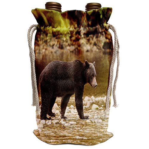 3dRose Danita Delimont - Michael DeFreitas - Bears - Grizzly bear fishing for salmon in Great Bear Rainforest, Canada. - Wine Bag (wbg_189071_1)
