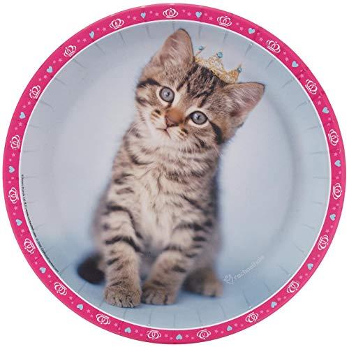 BirthdayExpress rachaelhale Glamour Cats Dinner Plates (16)]()