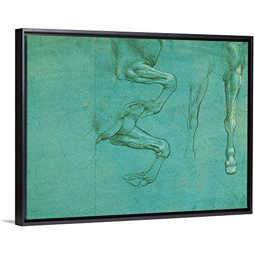 - Leonardo da Vinci Floating Frame Premium Canvas with Black Frame Wall Art Print Entitled Drawing of Horse Front Legs, by Leonardo da Vinci, 1490. Royal Library, Turin, Italy 40