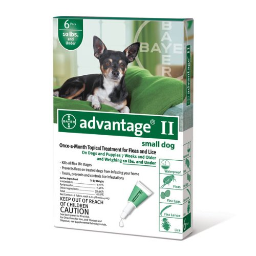 Bayer Topical Flea Treatment for Dogs up to 10 Lbs (6 Applications) (Best Over The Counter Flea Treatment)