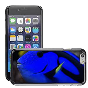 """Hot Style Cell Phone PC Hard Case Cover // M00134966 Hawaii Doctor Fish Surgeonfish Fish // Apple iPhone 6 4.7"""""""