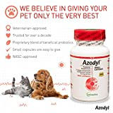 Vetoquinol Azodyl Kidney Health Supplement for Dogs & Cats, 90ct - Probiotic Pet Well-being - Help Support Kidney Function & Manage Renal Toxins - Renal Care Supplement - Easy-to-Swallow Small Caps