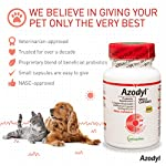 Vetoquinol Azodyl Kidney Health Supplement for Dogs & Cats, 90ct - Probiotic Pet Well-being - Help Support Kidney Function & Manage Renal Toxins - Renal Care Supplement - Easy-to-Swallow Small Caps 11