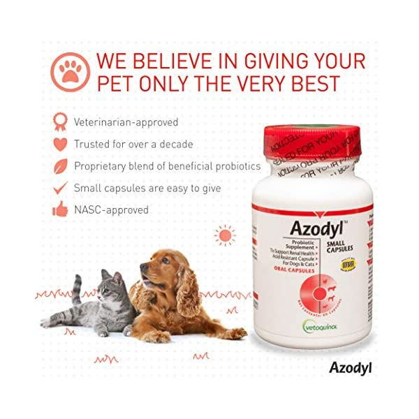 Vetoquinol Azodyl Kidney Health Supplement for Dogs & Cats, 90ct - Probiotic Pet Well-being - Help Support Kidney Function & Manage Renal Toxins - Renal Care Supplement - Easy-to-Swallow Small Caps 4