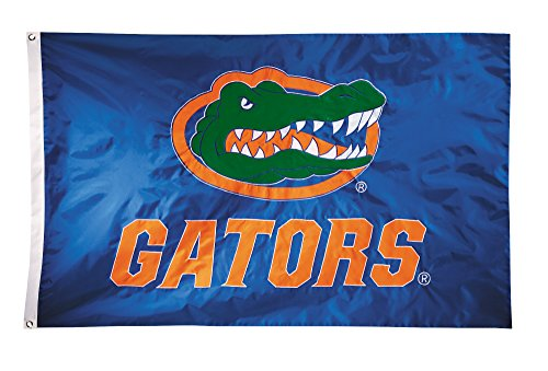 (BSI NCAA Florida Gators 2-Sided Nylon Applique Flag with Grommets, 3' x 5', Royal)