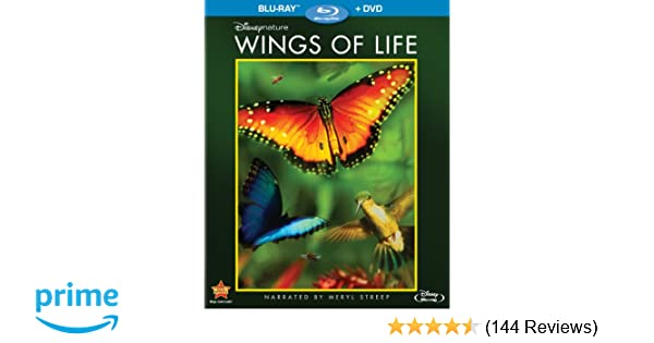 Amazon.com: Disneynature: Wings of Life (Blu-ray / DVD): Meryl ...