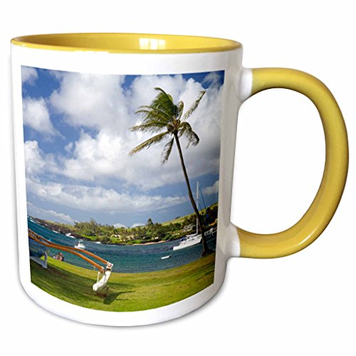 3dRose Danita Delimont - Hawaii - Kukuiula boat harbor, Kauai, Hawaii, USA - US12 DFR0131 - David R. Frazier - 11oz Two-Tone Yellow Mug - Hawaii Kukuiula