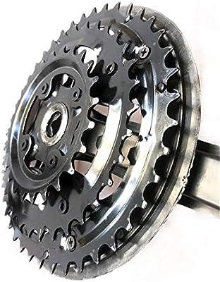Engranaje fijo Plato de bicicleta Juego de bielas de velocidad ...