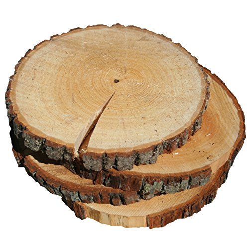 Wilson Enterprises 4 Pack Basswood Round Rustic Wood, Unsanded with Cracks, 9-11