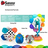 Sassy Move & Groove Baby Box - 6+ Months