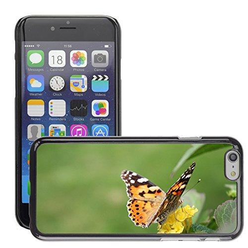 """Just Phone Cases Hard plastica indietro Case Custodie Cover pelle protettiva Per // M00127822 Papillon Insecte Nature Fleurs // Apple iPhone 6 PLUS 5.5"""""""