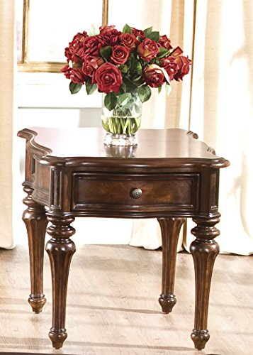 Liberty Furniture INDUSTRIES 259-OT1020 Andalusia Occasional End Table, Vintage Cherry Finish, 24