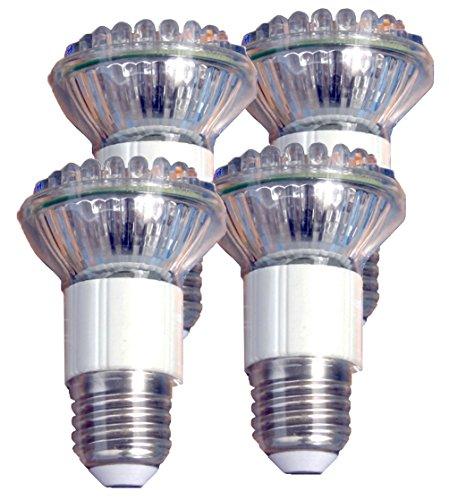 Flood Light Bulb Disposal - 8