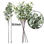 Artificial-Plants-Greenery-5pcs-35Piece-Straight-Silver-Dollar-Eucalyptus-Leaf-Stems-Silk-Greenery-Bushes-Fake-Plants-Flowers-Floral-for-Home-Party-Wedding-Decor