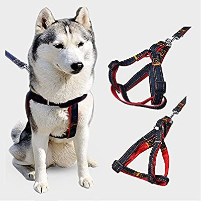 Dog Leash Harness Set Adjustable Heavy Duty Denim Durable Leash Strap for Small and Large Dog, Perfect for Training Walking Running Hiking - Premium Quality (S-M)