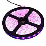 XKTTSUEERCRR 3528 SMD 16.4Ft 5Meter 300LEDs Pink Flexible Waterproof Strip Lighting With DC Power Adapter Connector