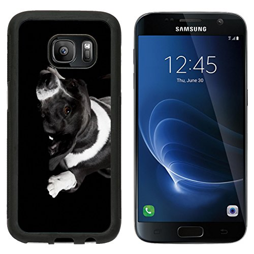 Price comparison product image MSD Premium Samsung Galaxy S7 Aluminum Backplate Bumper Snap Case IMAGE ID: 8647405 Beautiful dog lying on the floor with a sad look isolated on black