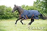 Gallop 100g Ripstop Turnout Rug