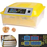 Kemanner Automatic 48 Digital Clear Egg Incubator