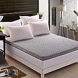 LJ&XJ Comfortable bed mattress,Foldable warm tatami mattress moistureproof breathable floor mat,Anti dust mite non-slip tatami mat-O Full