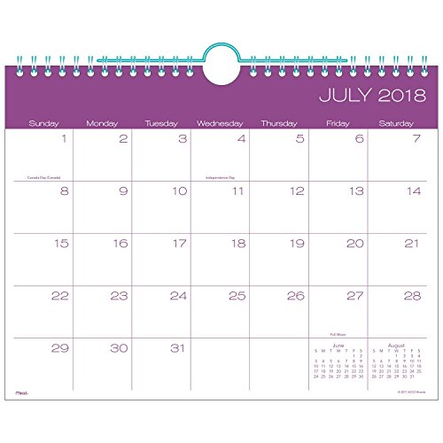 Mead Academic Monthly Wall Calendar, July 2018 - Oct 2019, 11